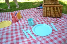 Stereotypical picnic setup.